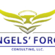 Angels Forge Consulting